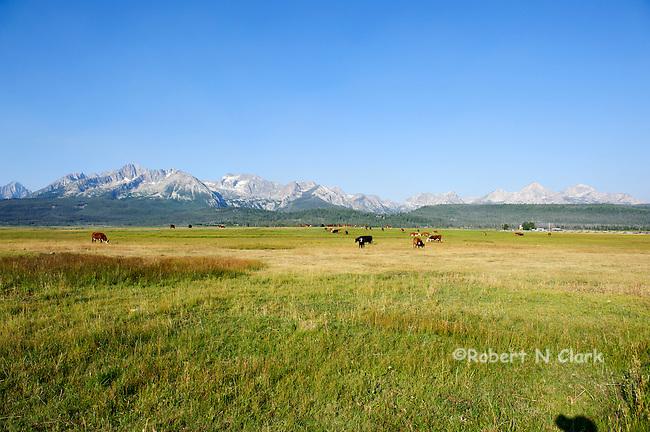 Stanley, Idaho area 8-2-12