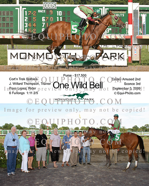 One Wild Bell winning at Monmouth Park on 9/3/09.  Photo By EQUI-PHOTO