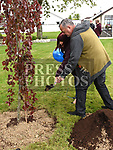 Mother of Cameron Reilly, Tracy Glass helps with the tree planting in memory of her son. Photo:Colin Bell/pressphotos.ie
