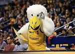 12.02.2019, Mercedes Benz Arena, Berlin, GER, ALBA ERLIN vs.  Basketball Loewen Braunschweig, <br /> im Bild ALBA-Maskottchen mit Buuuh-Plakat<br /> <br />      <br /> Foto &copy; nordphoto / Engler