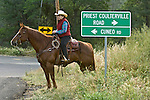 Greeley Hill, California May 16, 2009..Cattle Drive from Boneyard Creek along Cuneo Road crossing Highway 120 to Kassabuam Meadow...Photo by  Al Golub/Golub Photography.