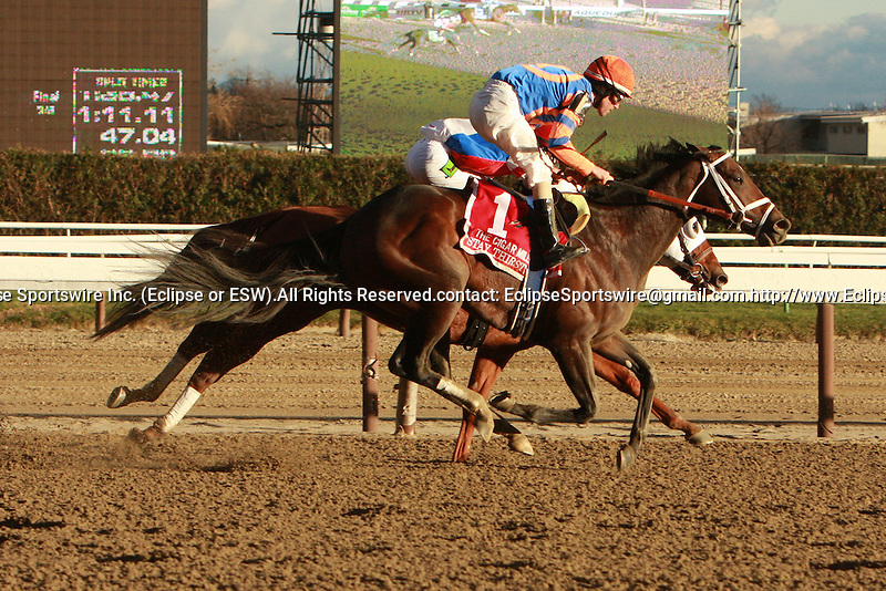 Stay Thirsty (N0. 1) with Ramon Dominguez aboard fights off the filly Groupie Doll to win the  24th running of the Grade I Cigar Mile for 3-year olds & up, going 1 mile at Aqueduct Racetrack. Trainer Todd Pletcher.  Owner Repole Stables ** .