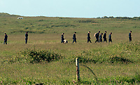 Thursday 15 June 2017<br /> Pictured: Investigators at Castlemartin Range.<br /> Re: A soldier has been killed and three others injured after an incident involving a tank at a Ministry of Defence base in Pembrokeshire.<br /> The soldier, from the Royal Tank Regiment, died in the incident at Castlemartin Range.<br /> Two people were taken to Morriston Hospital in Swansea, while another casualty remains in Cardiff's University Hospital of Wales.<br /> An investigation is under way.<br /> Live firing was scheduled to take place at the range between Monday and Friday.<br /> In May 2012, Ranger Michael Maguire died during a live firing exercise at the training base. An inquest later found he was unlawfully killed.