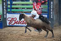 SEBRA - Beverly, WV - 9.9.2016 - Mutton Bustin'