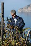 Giovanni, viticulteur s occupe de 10 hectares de vignes vers Corniglia (domaine de la Polenza) Parc national des Cinque Terre. Ligurie. Italie