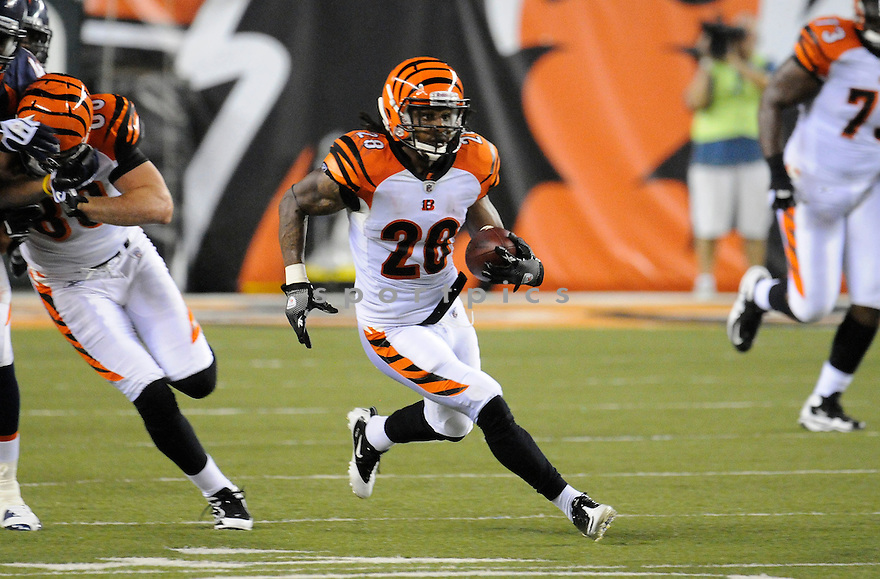 BERNARD SCOTT, of the Cincinnati Bengals in action during the Bengals game against the Denver Broncos    at Paul Brown Stadium in Cincinnati, OH.  on August 20, 2010.  The Bengals beat the Broncos 22-9 in the second week of preseason games...