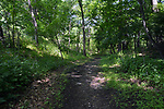 View of the entrance trail of the Esopus Bends Nature Preserve on Wednesday, May 31, 2017. Photo by Jim Peppler. Copyright/Jim Peppler-2017.