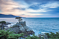 Lone Cypress at sunset.  Carmel California