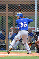 GCL Blue Jays catcher Matt Morgan (36) at bat during a game against the GCL Tigers on June 30, 2014 at Tigertown in Lakeland, Florida.  GCL Blue Jays defeated the GCL Tigers 3-1.  (Mike Janes/Four Seam Images)