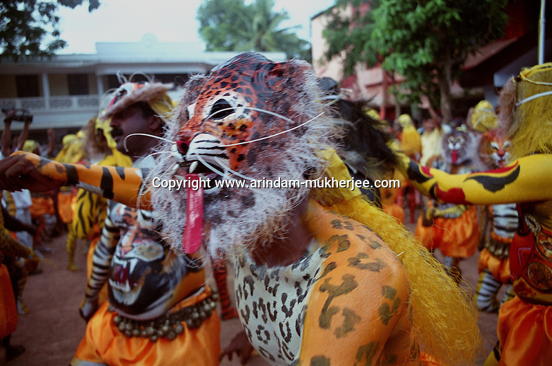 Pulikali performers during performance, Trichur, Kerala, India..Pulikali or Kaduvvakali is a two hundred year old folk dance form, practised mostly in Thrissur and Palghat districts of Kerala. It liberally makes use of forms and symbols of nature that finds expression in its bright, bold body painting and high-energy dance movements. The philosophy of Pulikali is that human and nature are integral parts of each other. So by fusing man and beast in its artistic language, it flamboyantly celebrates the connection. Arindam Mukherjee