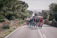 Markel Irizar (ESP/Trek-Segafredo): the peloton's locomotive<br /> <br /> 27th Challenge Ciclista Mallorca 2018<br /> Trofeo Campos-Porreres-Felanitx-Ses Salines: 176km