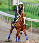 LOUISVILLE, KENTUCKY - MAY 01: Improbable, trained by Bob Baffert, exercises in preparation for the Kentucky Derby at Churchill Downs in Louisville, Kentucky on May 1, 2019. John Voorhees/Eclipse Sportswire/CSM