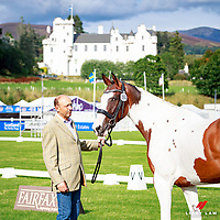 AUS-Bill Levett with Piltown Colours during the CCI2* First Horse Inspection. 2017 GBR-Blair Castle International Horse Trial.  Blair Atholl. Scotland. Wednesday 23 August. Copyright Photo: Libby Law Photography]