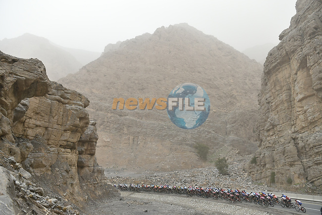 The peloton in the mountains during Stage 6 of the 2019 UAE Tour, running 175km form Ajman to Jebel Jais, Dubai, United Arab Emirates. 1st March 2019.<br /> Picture: LaPresse/Fabio Ferrari | Cyclefile<br /> <br /> <br /> All photos usage must carry mandatory copyright credit (© Cyclefile | LaPresse/Fabio Ferrari)