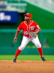 24 May 2009: Washington Nationals' second baseman Ronnie Belliard in action against the Baltimore Orioles at Nationals Park in Washington, DC. The Nationals rallied to defeat the Orioles 8-5 and salvage one win of their interleague series. Mandatory Credit: Ed Wolfstein Photo
