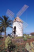 Spanien, Kanarische Inseln, Lanzarote, Museo Agricola bei Tiagua, Windmühle