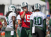 New York Jets quarterback Josh McCown (15), center, discusses a play with New York Jets wide receiver Andre Roberts (3), left, and wide receiver Jermaine Kearse (10), right, as they participate in a joint training camp practice with the Washington Redskins at the Washington Redskins Bon Secours Training Facility in Richmond, Virginia on Tuesday, August 14, 2018.<br /> Credit: Ron Sachs / CNP<br /> (RESTRICTION: NO New York or New Jersey Newspapers or newspapers within a 75 mile radius of New York City)