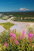 The Copper River and Mount Drum of the Wrangell Mountains, Wrangell Saint Elias National Park and Preserve, Alaska