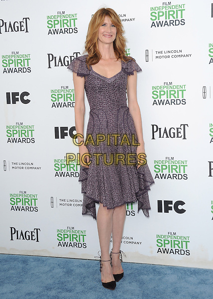 SANTA MONICA, CA, MARCH 01: Laura Dern at The 2014 Film Independent Spirit Awards held at Santa Monica Beach in Santa Monica, California, USA on March 1st, 2014.                                                                              <br /> CAP/DVS<br /> &copy;Debbie VanStory/Capital Pictures
