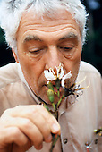 Makande, Gabon. Botanist Frans Breteler smelling a flower specimen from the rainforest canopy.