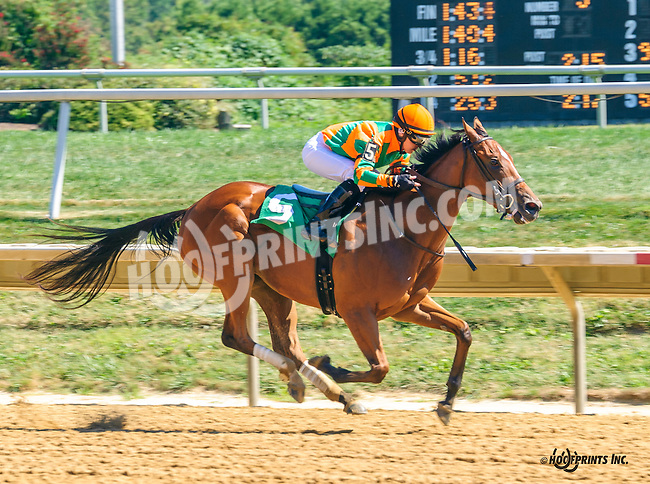 Just Like Lucy winning at Delaware Park on 9/12/16