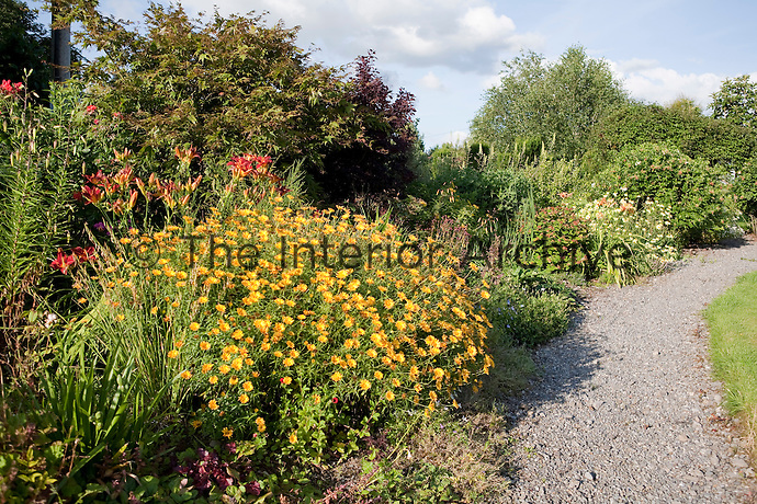 One of the mature flowerbeds overflows onto the garden path