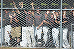 Jersey Shore team mates cheer on their team from the dugout.