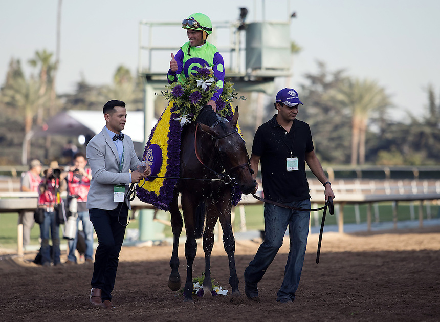 ARCADIA, CA - NOV 4: Javier Castellano, aboard New Money Honey #3, celebrates after winning the Breeders' Cup Juvenile Fillies Turf  at Santa Anita Park on November 4, 2016 in Arcadia, California. (Photo by Zoe Metz/Eclipse Sportswire/Breeders Cup)