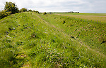 Ditch and embankment of the Wansdyke a Saxon defensive structure on All Cannings chalk downs near Tan Hill, Wiltshire, England