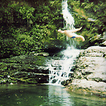 Young man diving off rock into swimming hole