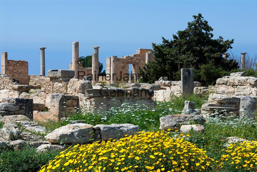 CYPRUS, near Kourion: archaelogical excavation - sanctuary of Apollo Hylates<br />