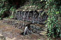 Spanien, Kanarische Inseln, Gomera, Quellen Chorros de Epina