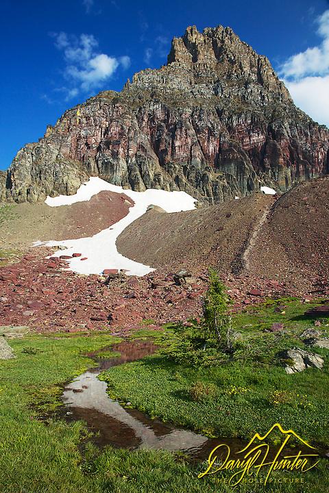 Mountain Stream, Mt. Clemens, Glacier National Park