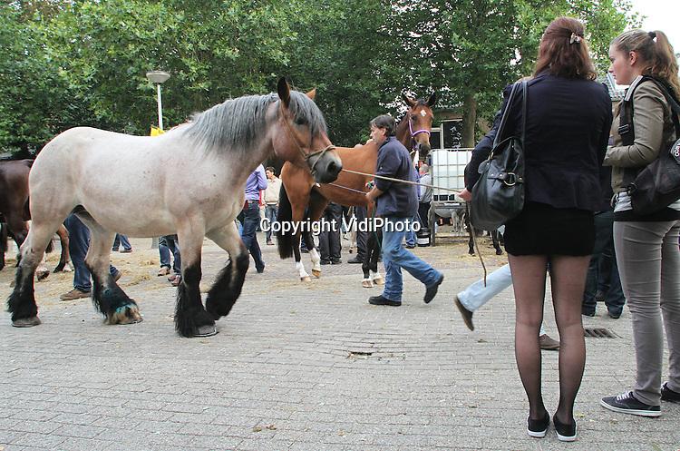Foto: VidiPhoto..ELST - Er zijn dit jaar fors minder paarden aangevoerd op de paardenmarkt in het Gelderse Elst dan voorgaande jaren. Waren er vorig jaar 2185 paarden en pony's, maandag waren er slechts 1815. Wat daarvan de oorzaak is weet de marktorganisatie niet. De Elster paardenmarkt dateert uit de Middeleeuwen en is de oudste en samen met Zuidlaren en Hedel de grootste van West-Europa. Veel paarden werden verkocht naar Roemenië, Denemarken, Duitsland en Italië. Dankzij verscherpte controles van AID en veeartsen is de kwaliteit van Nederlandse paarden erg hoog. Foto: Paardebenen.