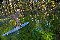 Greg McCormack Explores the Quinault Rainforest via Paddleboard - Olympic National Park - Washington State