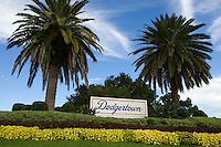 BASEBALL - MLB - DODGERTOWN (USA) - 03/08/2008 - PHOTO: CHRISTOPHE ELISE.DODGERTOWN (LOS ANGELES DODGERS)