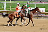 Nine Sixty at Delaware Park racetrack on 6/25/14
