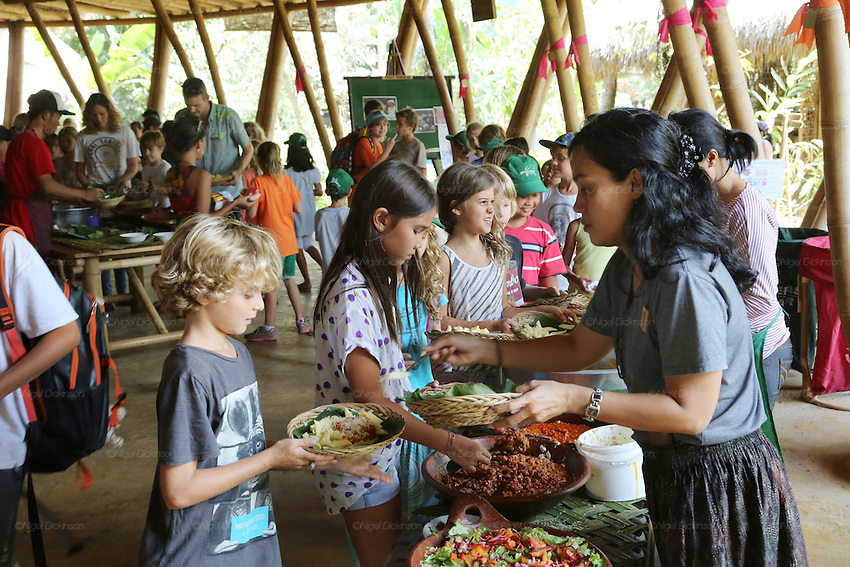 Students meeting for lunch in the Heart of School for a great selection of organic food<br />