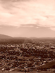 Sepia Photography of all other galleries, animals, flowers, botanical, trees, scenic, food, buildings, architecture, tropical, winter, spring, fall, leaves, etc.