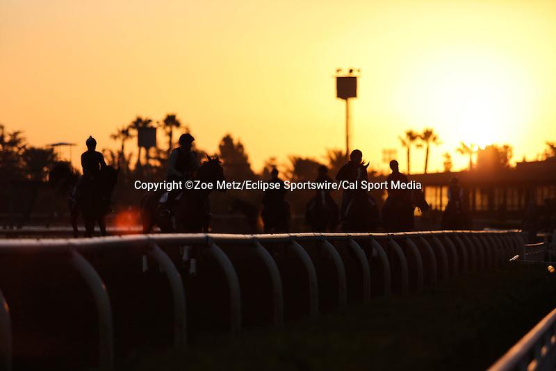October 28, 2014: Scenes at Santa Anita Park in Arcadia, California on October 28, 2014. Zoe Metz/ESW/CSM