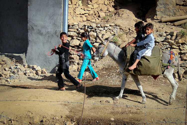 5/10/2012--Syagwez,Sulaimaniyah,Iraq--Children are playing with the donkey that was prepared to transfer the walnuts from the farm into the village.