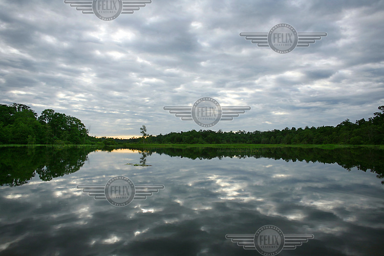 Trees and clouds are reflected in the lake.  The island boasts the largest continuous tracts of ancient forest in the Asia Pacific region and is extraordinarily rich in unique species of flora and fauna..