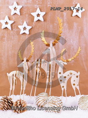 Marek, CHRISTMAS SYMBOLS, WEIHNACHTEN SYMBOLE, NAVIDAD SÍMBOLOS, photos+++++,PLMP2017-14,#xx# ,reindeers