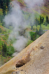 Fumarole venting steam at The Sulpher Works, Lassen Volcanic National Park, California