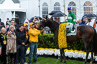 BALTIMORE, MD - MAY 21: Exaggerator #5, ridden by Kent J. Desormeaux, in the winner's circle after winning the 141st running of the Preakness Stakes at Pimlico Race Course on May 21, 2016 in Baltimore, Maryland. (Photo by Sue Kawczynski/Eclipse Sportswire/Getty Images)