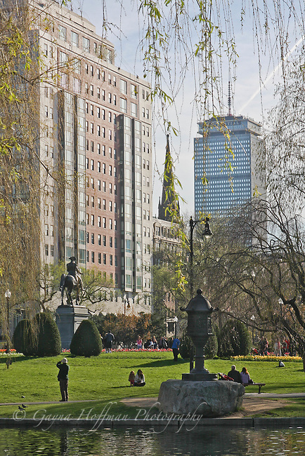 View of Boston hi-rise buildings, The Prudential Tower, from The Boston Public Garden. MA