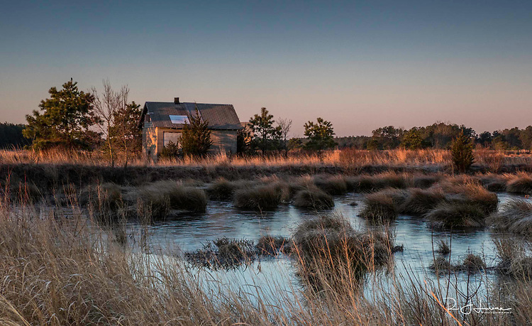Mar 18, 2018 / Pinelands early morning photos