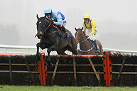 Storm Shadow ridden by Richard Johnson jumps during the Berry Bros & Rudd National Hunt Novices Hurdle - Horse Racing at Newbury Racecourse, Berkshire