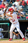 28 February 2007: St. Louis Cardinals left fielder So Taguchi at bat during a pre-season, Grapefruit League game against the Florida Marlins on Opening Day for Spring Training at Roger Dean Stadium in Jupiter, Florida. The Cardinals and Marlins share Roger Dean Stadium and the training facilities which opened in 1998 as a co-development between the Cardinals and the Montreal Expos.<br /> <br /> Mandatory Photo Credit: Ed Wolfstein Photo