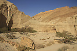 Israel, Wadi Zohar in the Judean Desert
